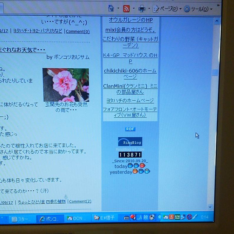 20110921___83u_83_8D_83O_83J_83E_83_93_83_5E_81_5B__8A_DB_82P_94N_96_DA_81_404.jpg