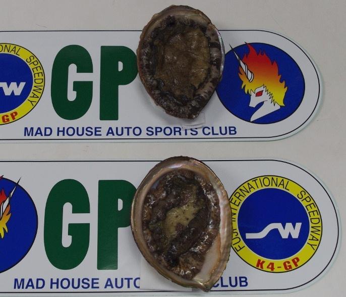 IMGP0991.JPG
